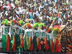 Football Lions Supporters 12eGainde