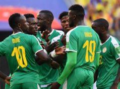 Lions Senegal (1)