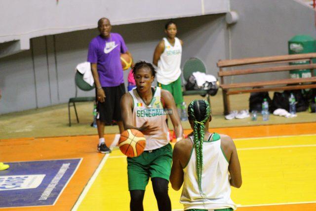Lionnes Du Senegal Phase 2 13