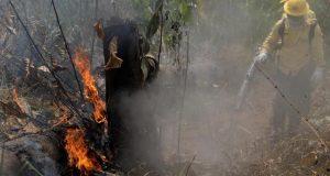 2019 08 25t205143z 1066100071 Rc1447c0b600 Rtrmadp 3 Brazil Environment Wildfires 0