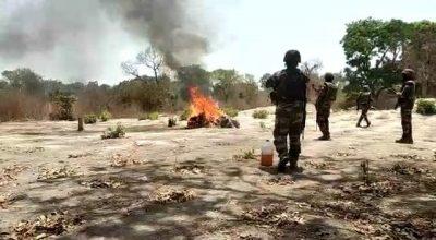 Ziguinchor : 06 champs de chanvre indien et 10 puits détruits par l'Armée