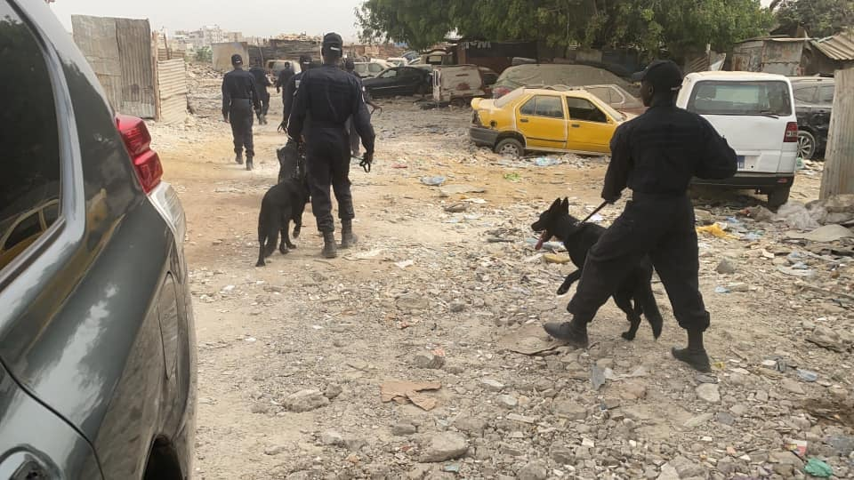 Ancienne piste de Mermoz-Ouakam :800 personnes arrêtées avec des Armes blanches, de la drogue-vidéo
